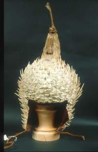 Porcupine helmut
